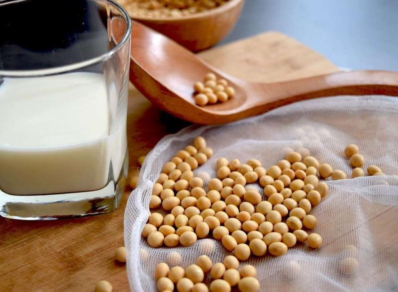 黑豆和红豆豆浆的功效喝豆浆的饮食禁忌